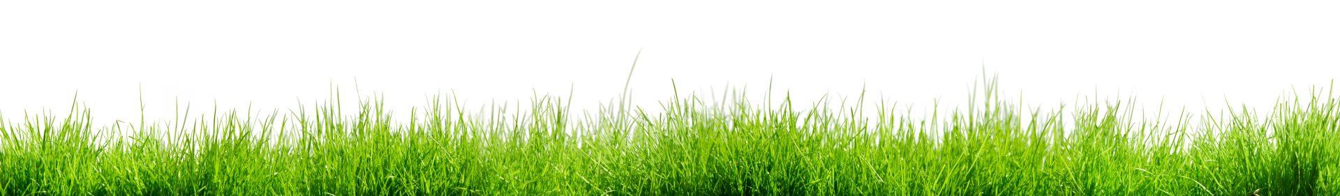 Gstoettenmeier Rasen - Footer